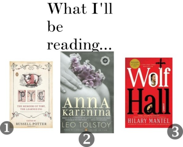 What-I'll-Be-Reading-January