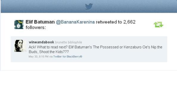Elif Batuman retweeted me
