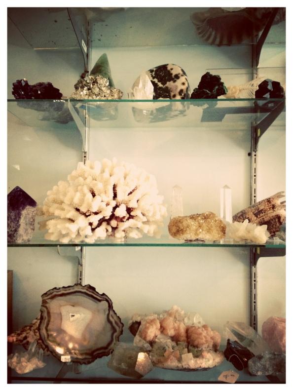 Blooming-Shells-2