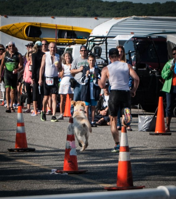 This dude finished the race with his dog, Mighty.