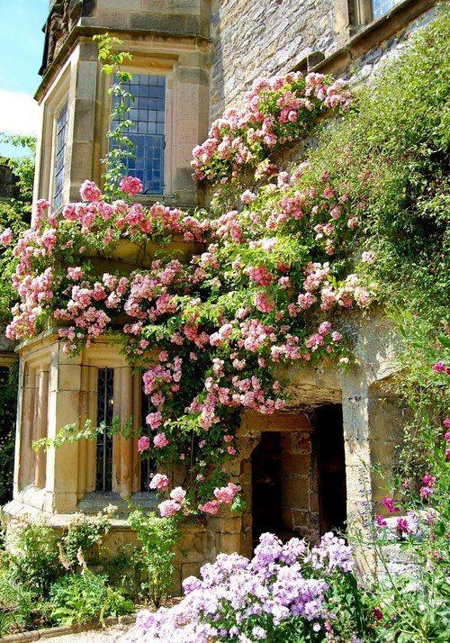 English Garden 10