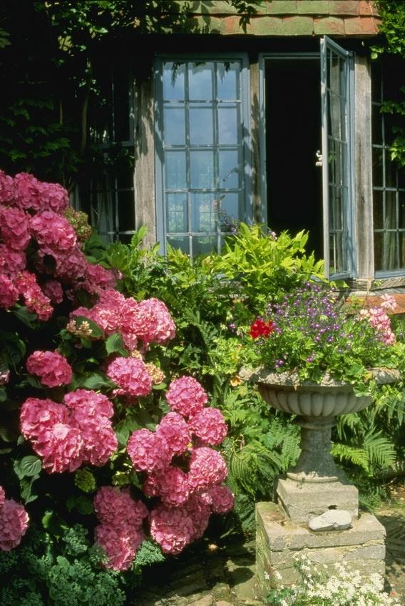 English Garden 6